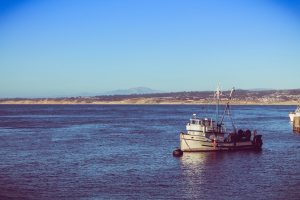 Vibrant fisheries depend on healthy oceans